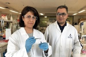 Iranian researchers unlock full potential of 'supermaterial' graphene